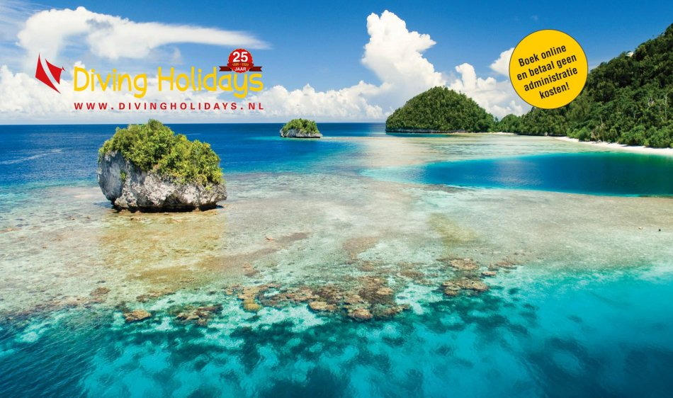 DH Caroussel Indonesie duiken