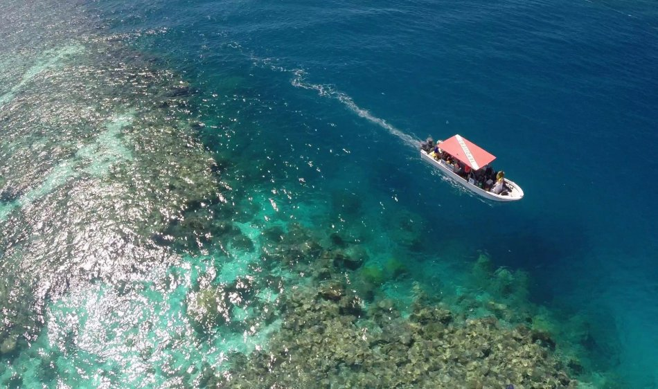 Manta Ray Bay Hotel - Diving Holidays