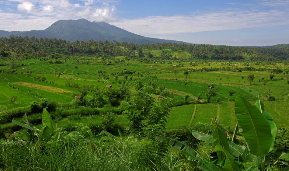 Indonesie - Diving Holidays