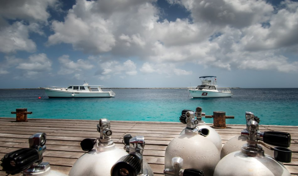 Bonaire - Diving Holidays