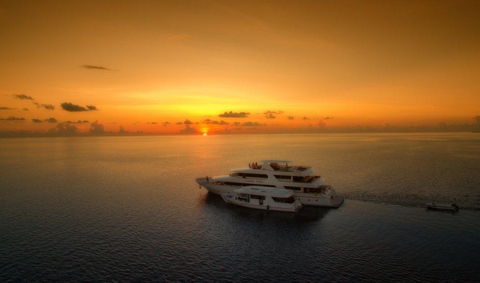 MV Carpe Vita - Diving Holidays