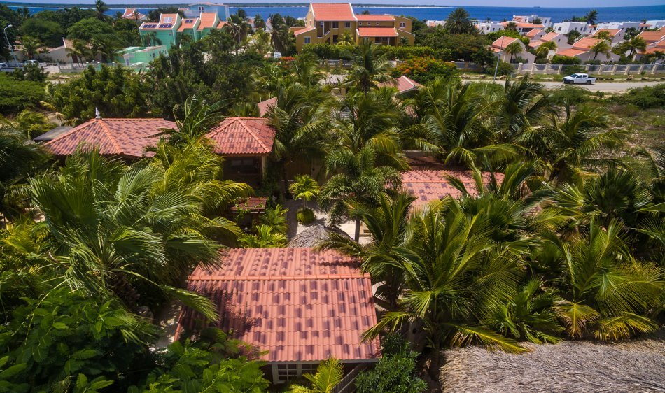 Bamboo Bonaire Boutique Resort - Diving Holidays