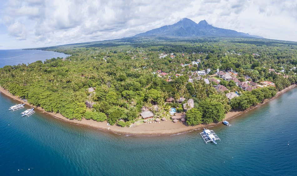 Pura Vida Beach & Dive Resort - Dauin - Diving Holidays