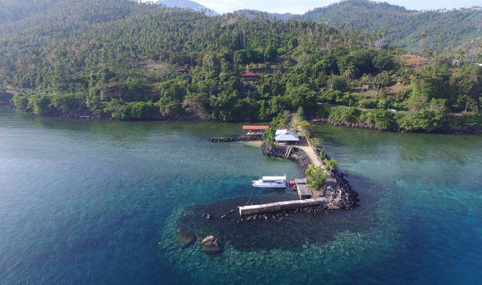 Lumba Lumba Diving - Diving Holidays