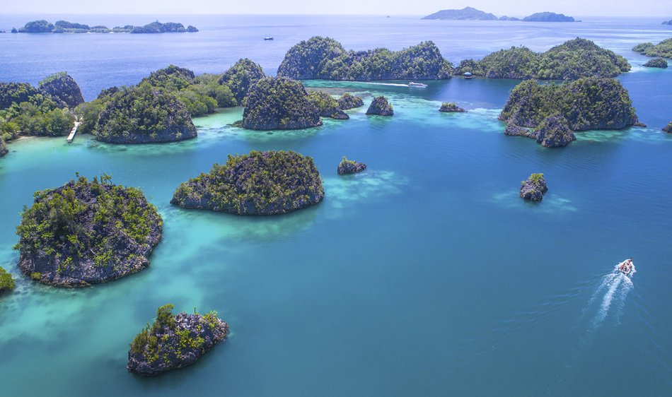 Papua Paradise Eco Resort - Diving Holidays