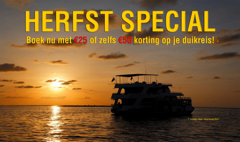 Herfst Special - Diving Holidays
